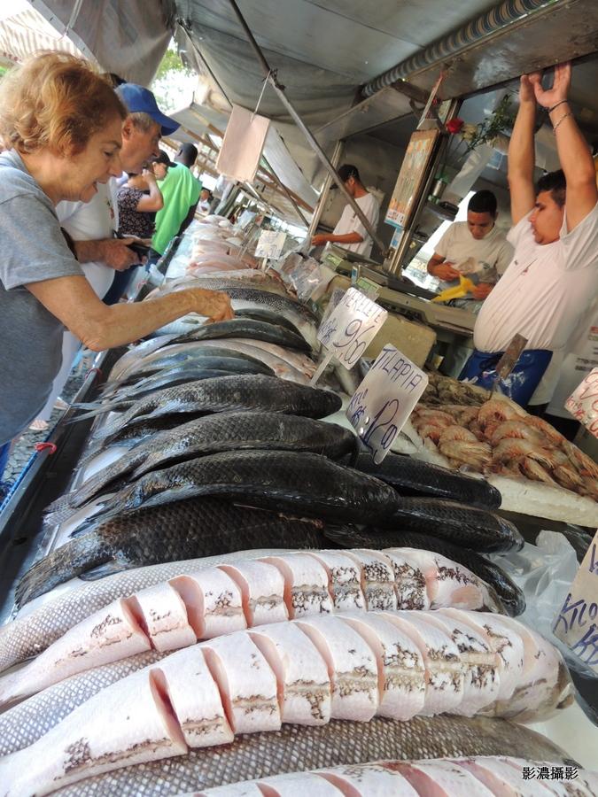 巴西魚攤子_图1-7