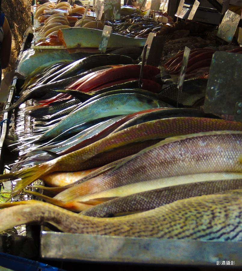巴西魚攤子_图1-6