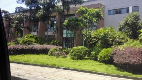 高娓娓:重庆新闻学院大讲堂的分享交流会_图1-4