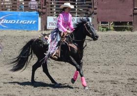 北加州的牧人竞技