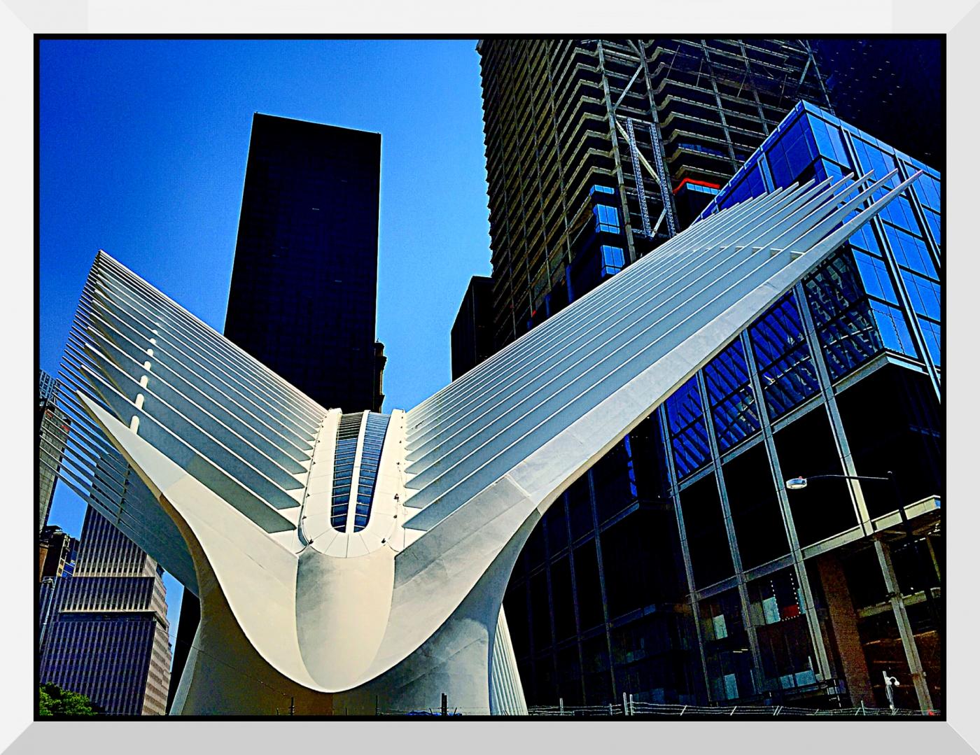 【盲流摄影】纽约手机扫街-1(海量图片)_图1-10