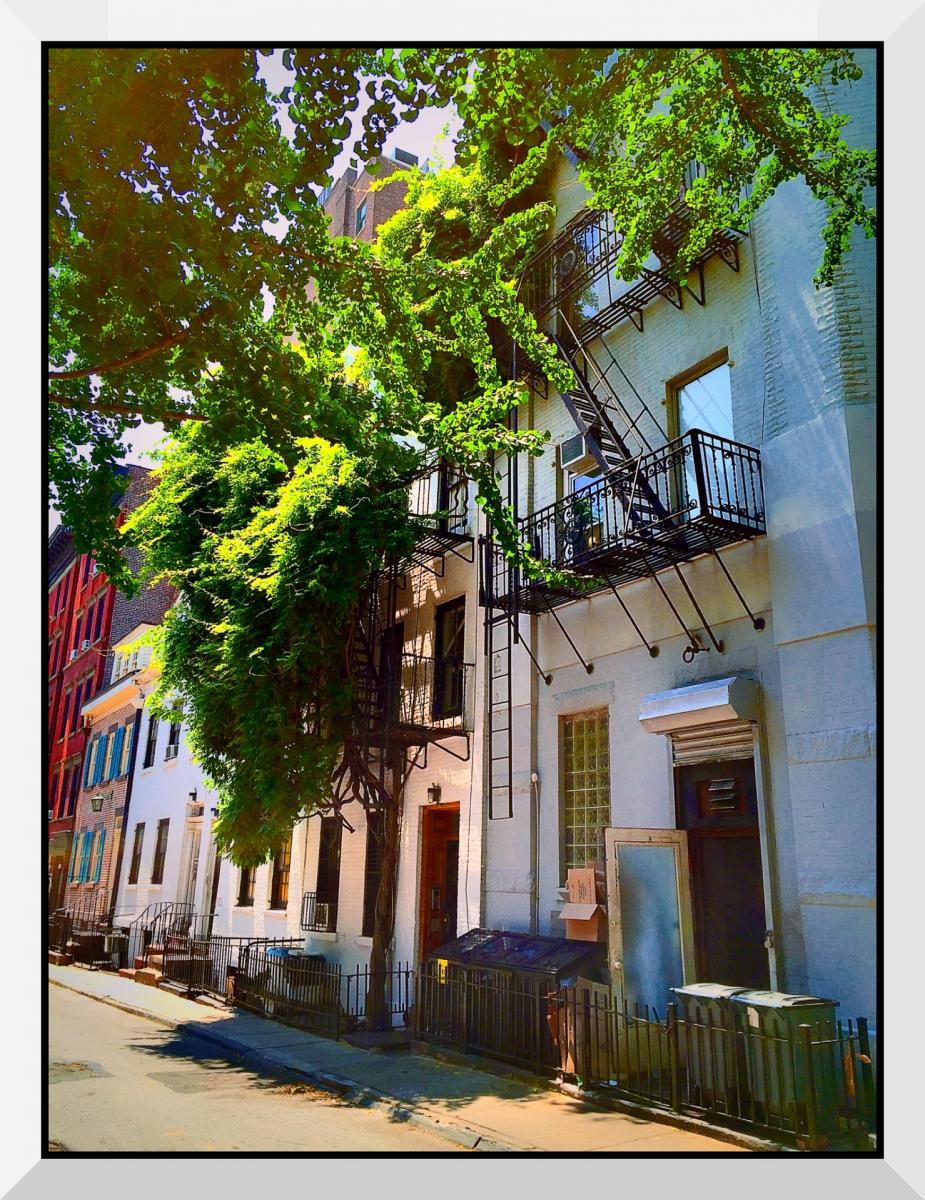 【盲流摄影】纽约手机扫街-1(海量图片)_图1-14