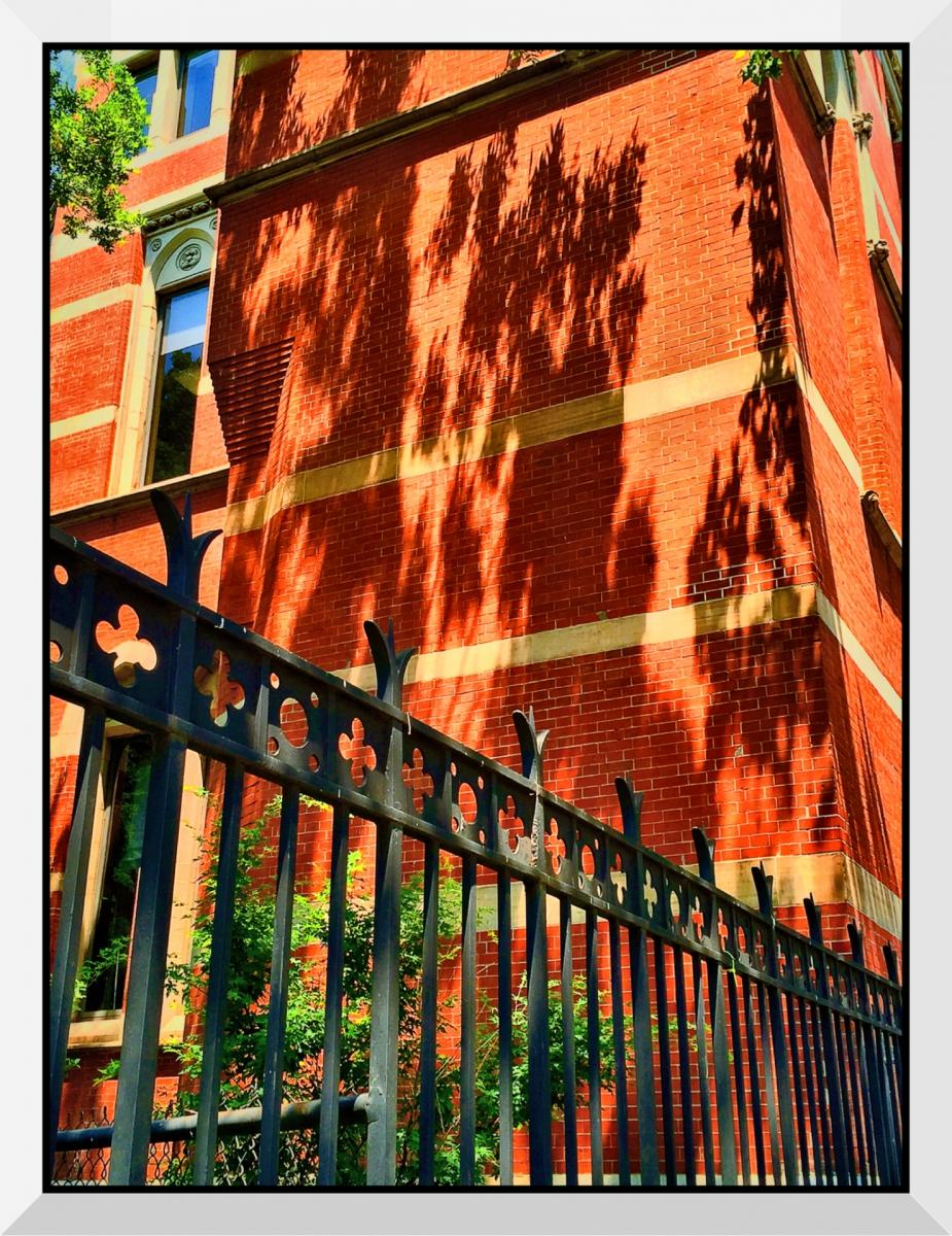 【盲流摄影】纽约手机扫街-1(海量图片)_图1-16