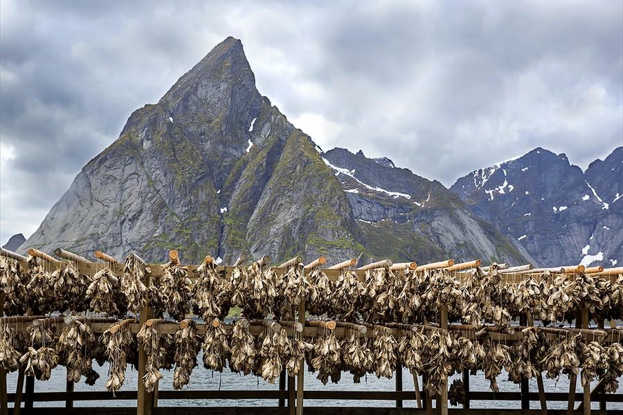 探訪 挪威 罗弗敦群岛_图1-15