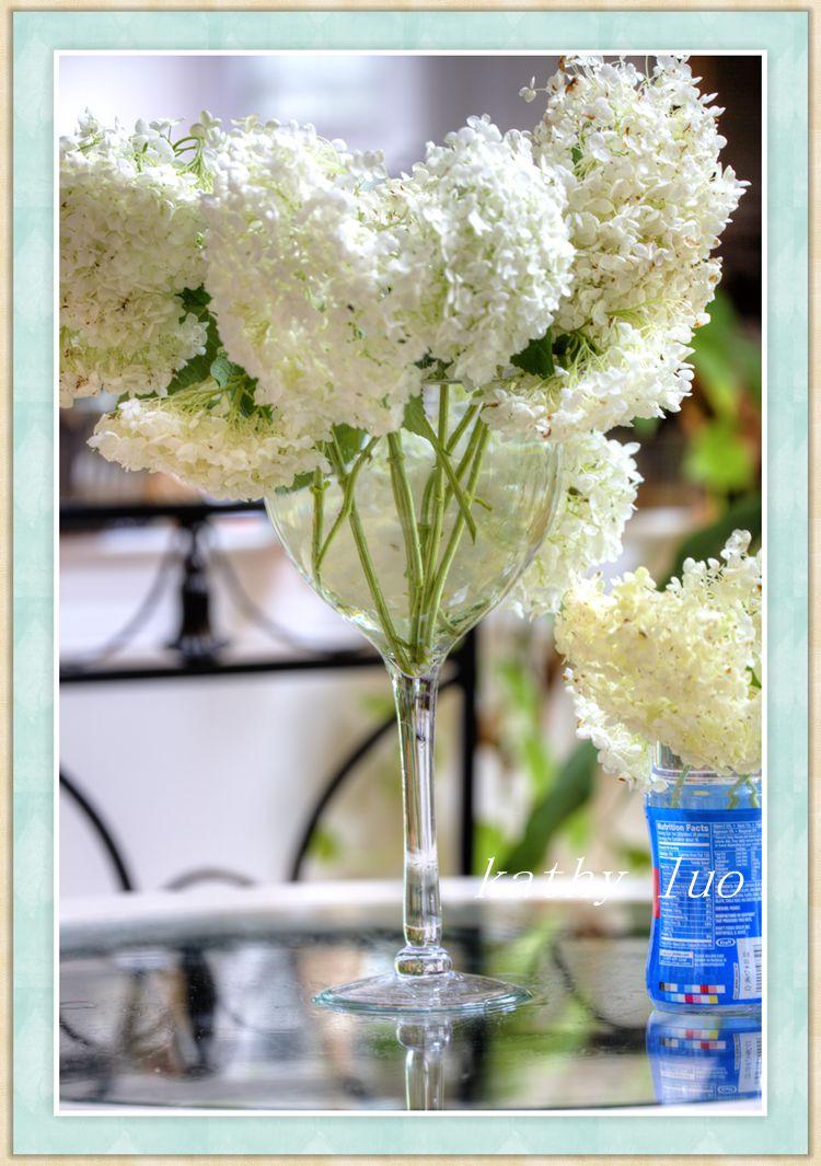 【小虫摄影】绣球花杯子_图1-2