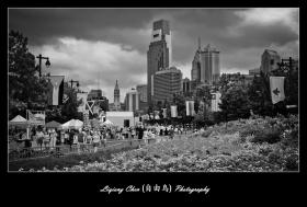 【自由鸟】费城,一座历史名城