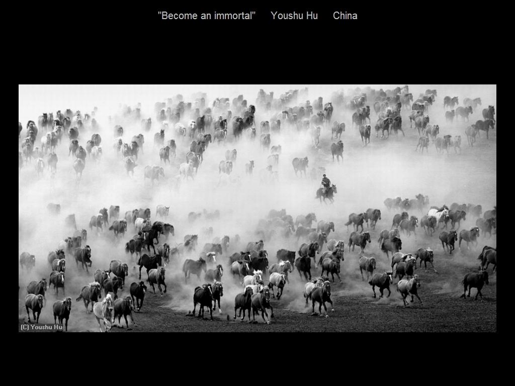 敬请欣赏纽约摄影学会2016年沙龍數碼單色自由題組獲獎作品_图1-1