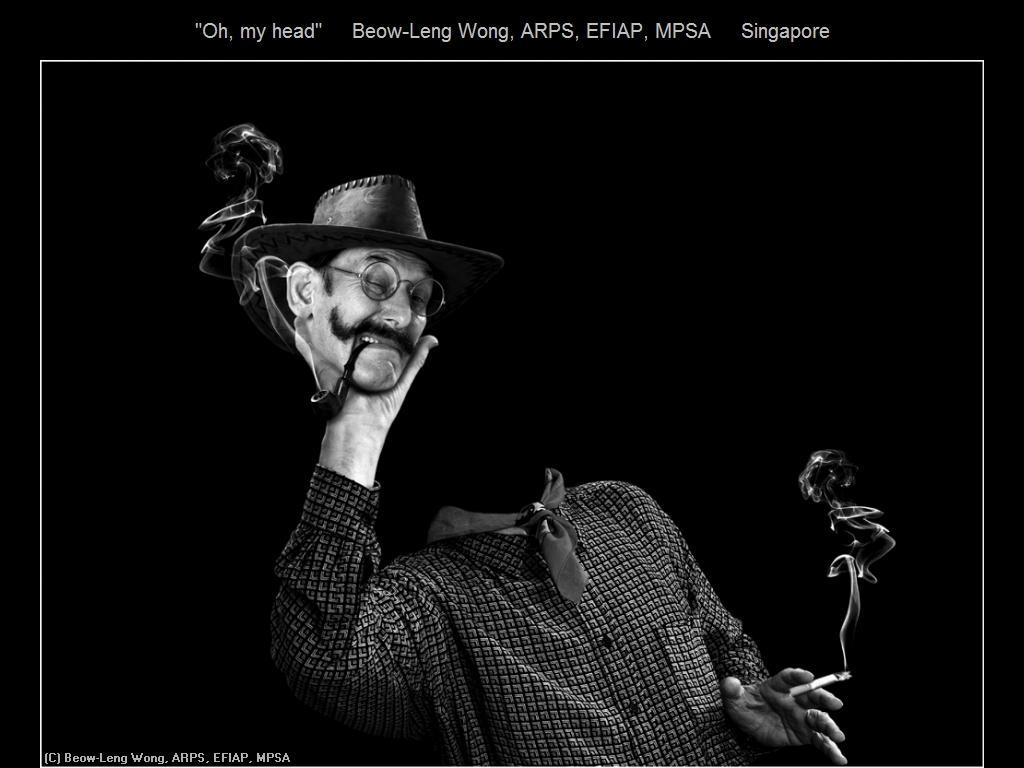 敬请欣赏纽约摄影学会2016年沙龍數碼單色自由題組獲獎作品_图1-10