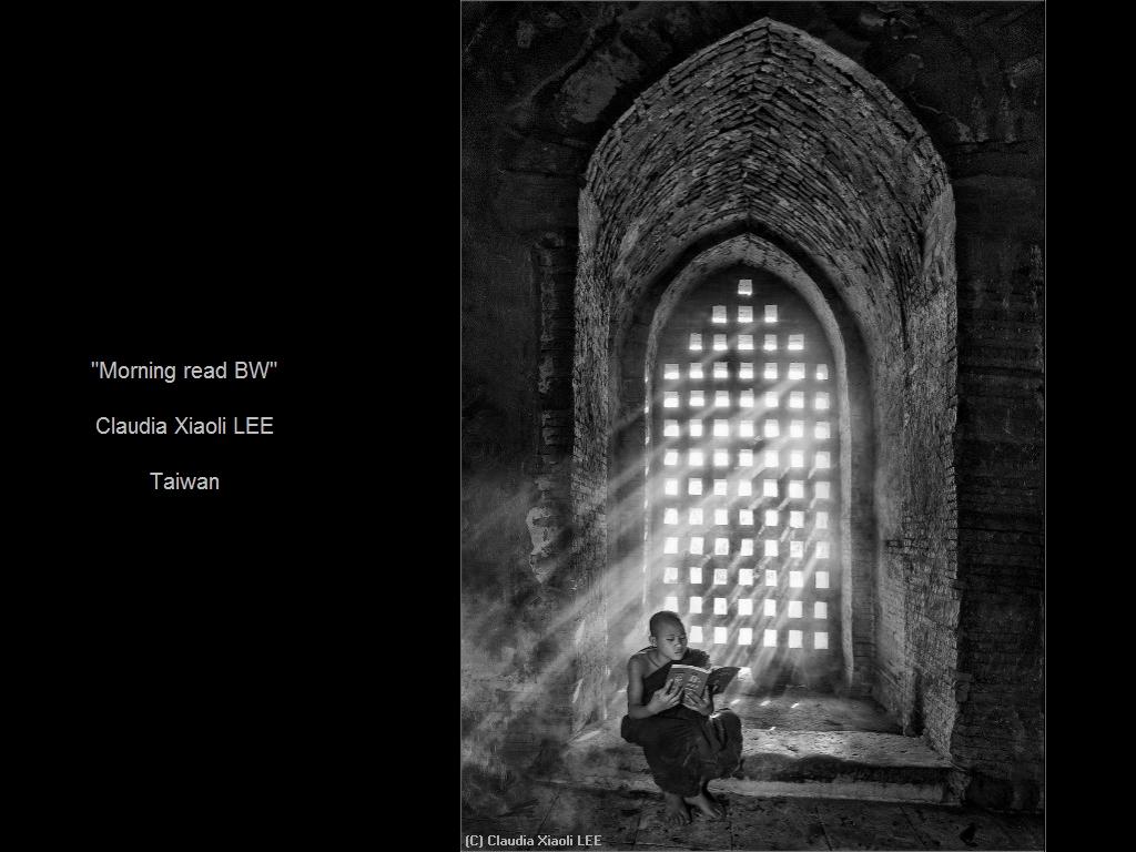 敬请欣赏纽约摄影学会2016年沙龍數碼單色自由題組獲獎作品_图1-19