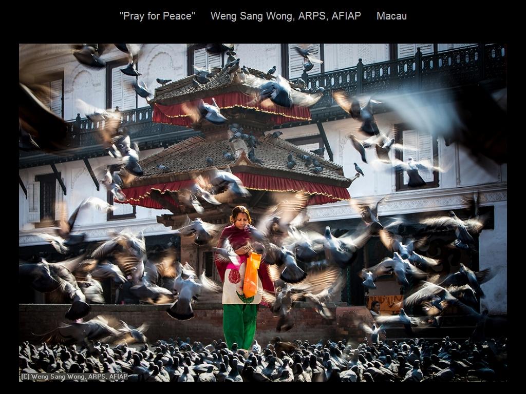 纽约摄影学会2016年沙龍數碼旅遊攝影組部分獲獎作品_图1-11