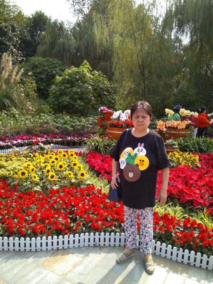 成都植物园能满足你一切悠适怀古的臆想_图1-9