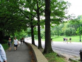 纽约市中央公园随拍