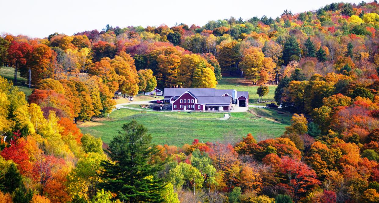 Vermount - 美国大农村的秋天好美!_图1-4