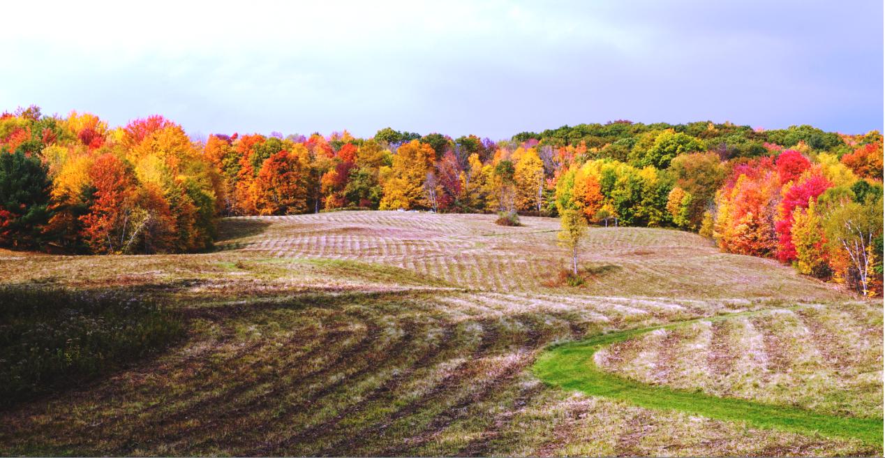Vermount - 美国大农村的秋天好美!_图1-5