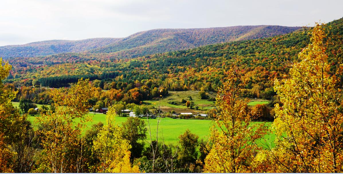 Vermount - 美国大农村的秋天好美!_图1-7