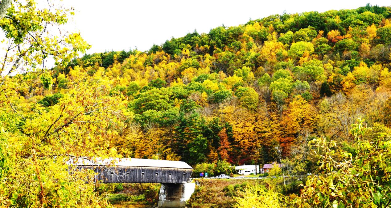 Vermount - 美国大农村的秋天好美!_图1-15