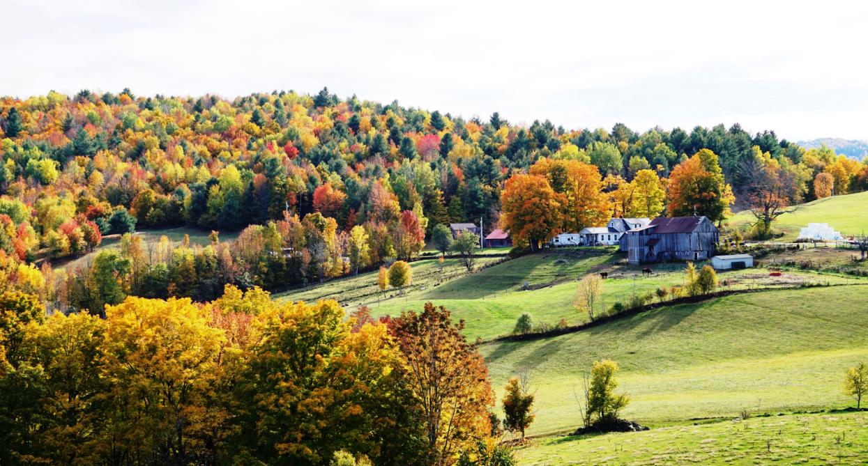 Vermount - 美国大农村的秋天好美!_图1-8