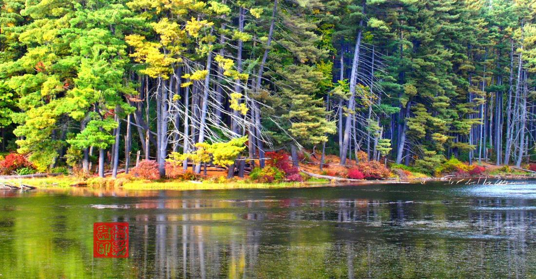 【攝影蟲】紐約七湖徑秋色已濃_图1-4