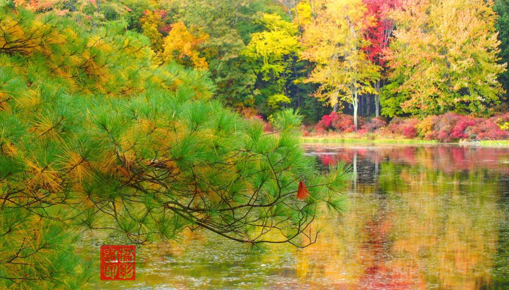 【攝影蟲】紐約七湖徑秋色已濃_图1-5