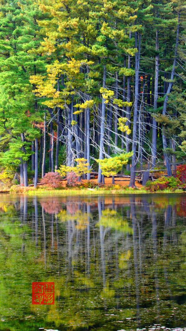 【攝影蟲】紐約七湖徑秋色已濃_图1-6