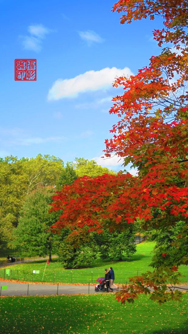 【攝影蟲】家門口的秋色(中央公園初秋)_图1-3
