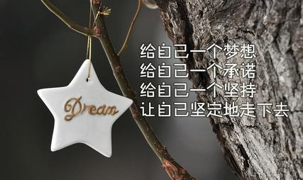 Dream_图1-1