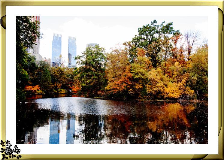 中央公园59街进口秋色(11月4日拍摄)_图1-5