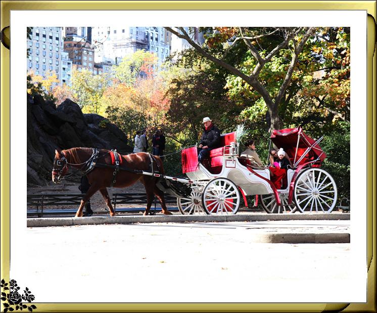 中央公园59街进口秋色(11月4日拍摄)_图1-10