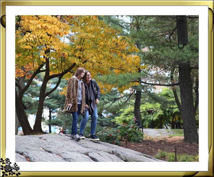 中央公园59街进口秋色(11月4日拍摄)_图1-16