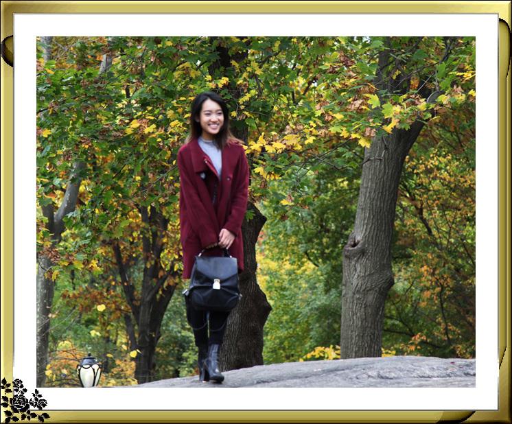 中央公园59街进口秋色(11月4日拍摄)_图1-19