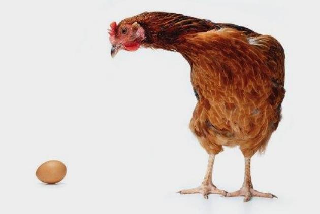 先有鸡还是先有蛋:当然是先有蛋!_图1-1