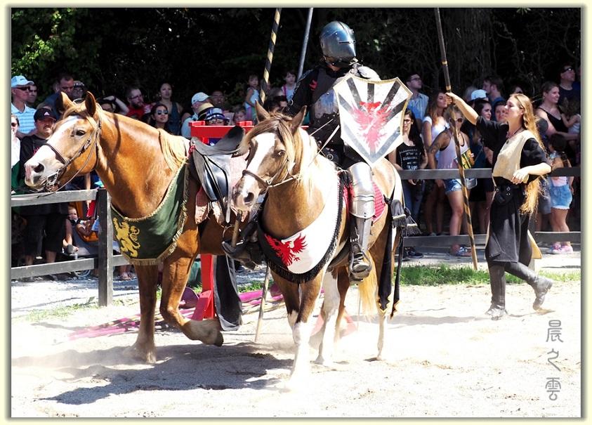 纽约中世纪村的骑马术表演_图1-1