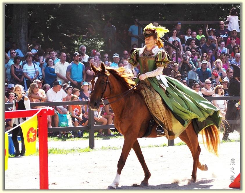 纽约中世纪村的骑马术表演_图1-2