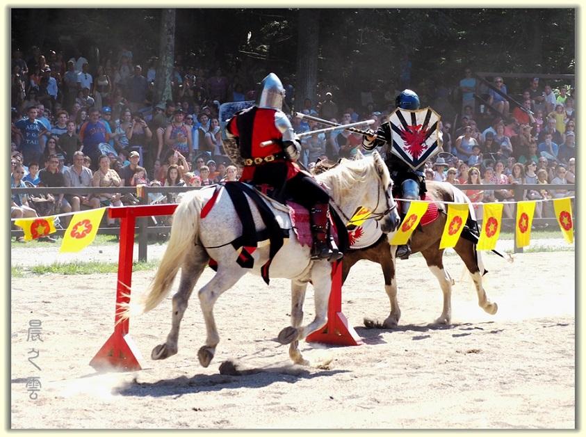 纽约中世纪村的骑马术表演_图1-3