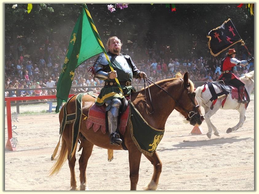 纽约中世纪村的骑马术表演_图1-4