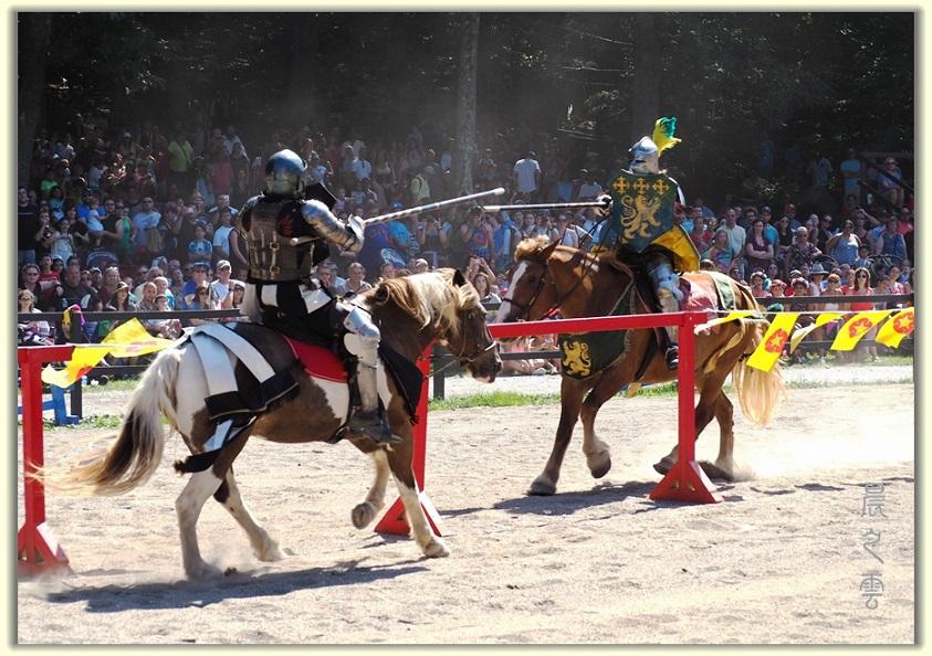 纽约中世纪村的骑马术表演_图1-5