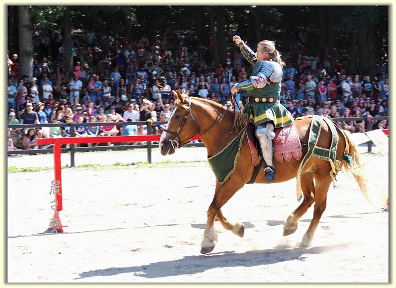纽约中世纪村的骑马术表演_图1-6