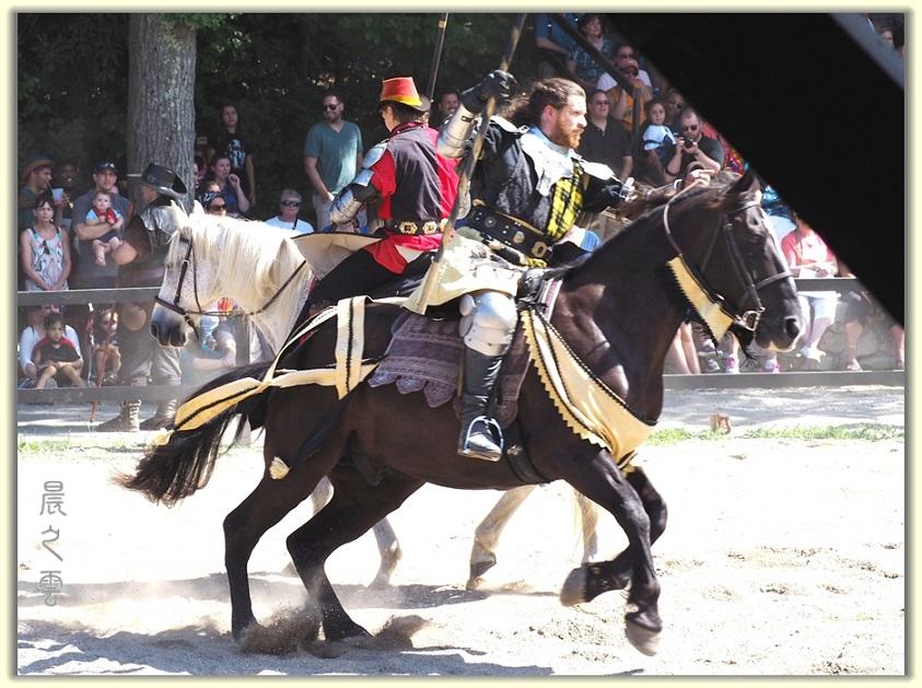 纽约中世纪村的骑马术表演_图1-7