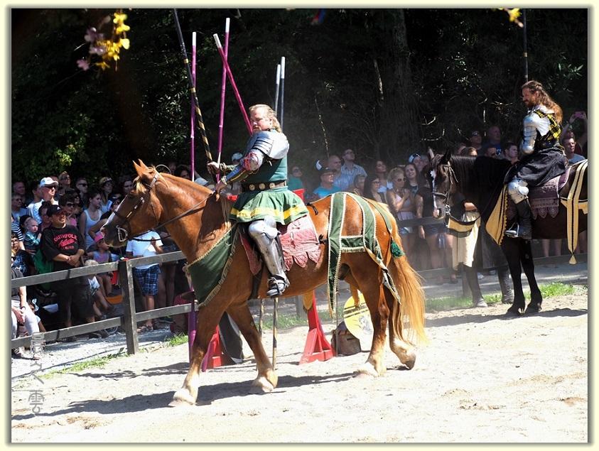 纽约中世纪村的骑马术表演_图1-8