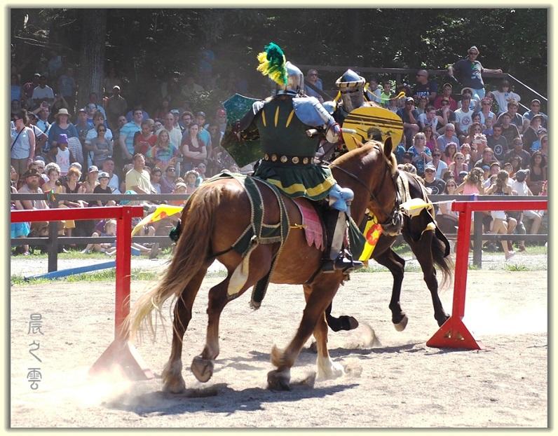 纽约中世纪村的骑马术表演_图1-9