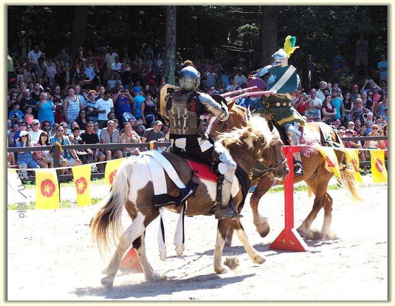 纽约中世纪村的骑马术表演_图1-10