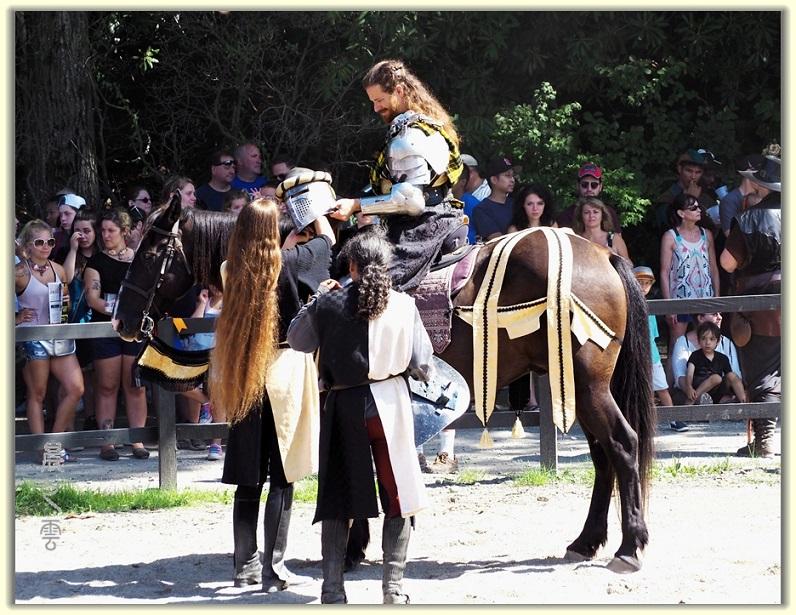 纽约中世纪村的骑马术表演_图1-11