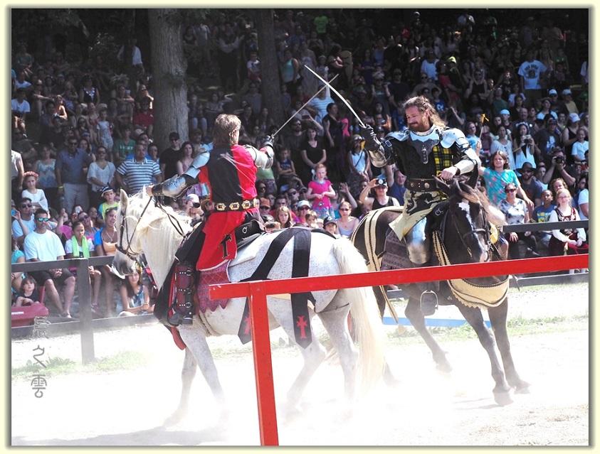 纽约中世纪村的骑马术表演_图1-12