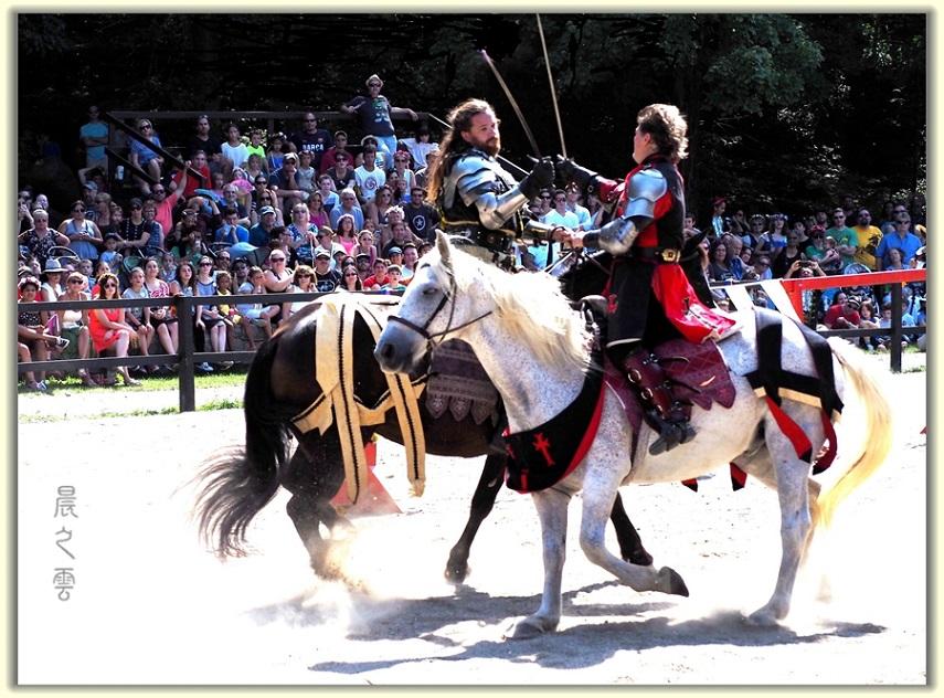 纽约中世纪村的骑马术表演_图1-13