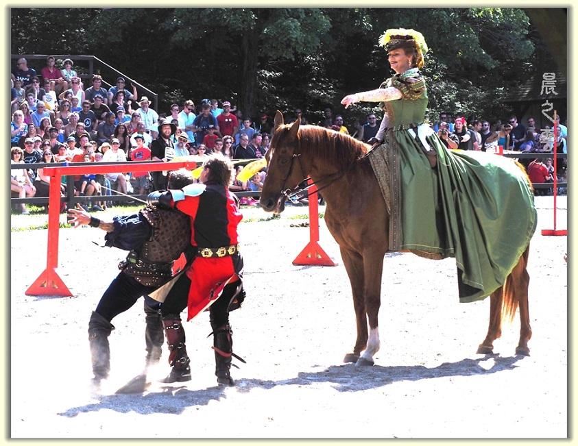 纽约中世纪村的骑马术表演_图1-14