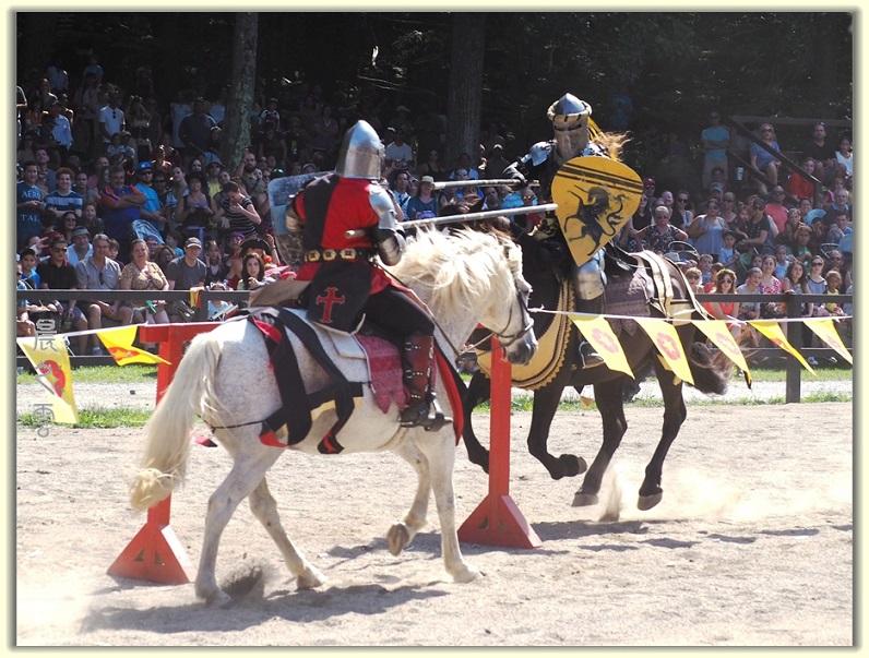 纽约中世纪村的骑马术表演_图1-15