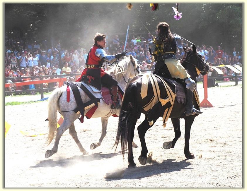 纽约中世纪村的骑马术表演_图1-16