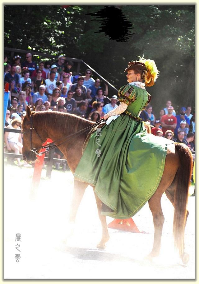 纽约中世纪村的骑马术表演_图1-17