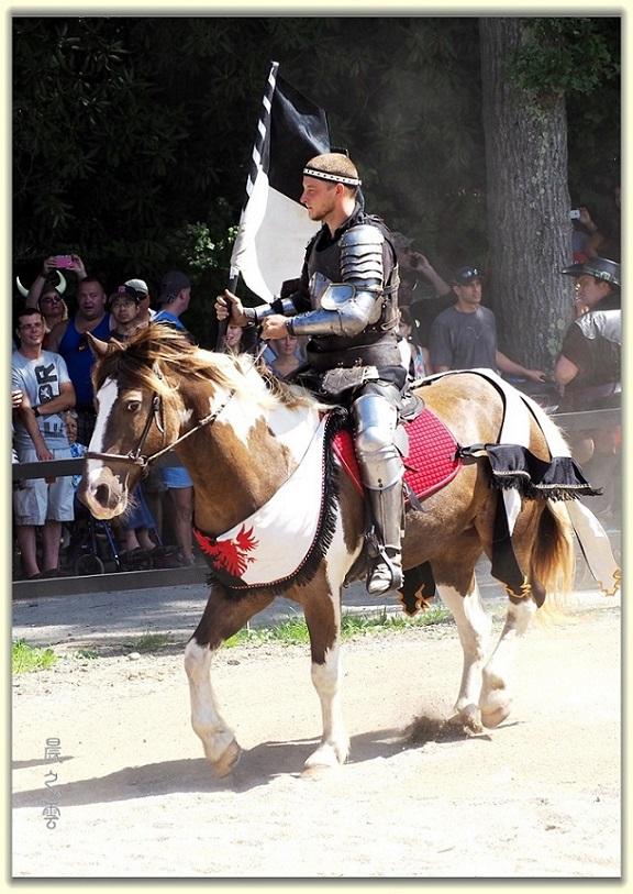 纽约中世纪村的骑马术表演_图1-18