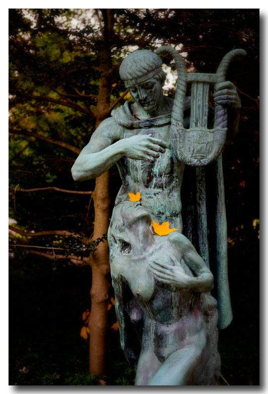 《酒一船摄影》:纽约长岛植物园揽秋_图1-11
